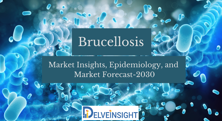 What is the Brucellosis Market Patient Pool in 7MM covering the United States?