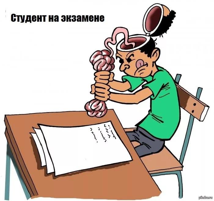 картинка с селедкой моя учеба в институте россияне сегодня