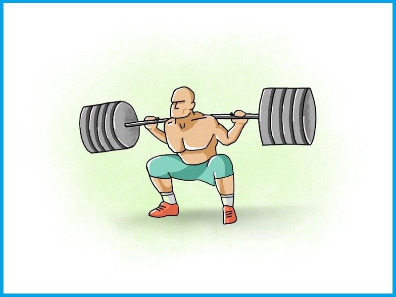 картинки тренировок по приседанию со штангой может