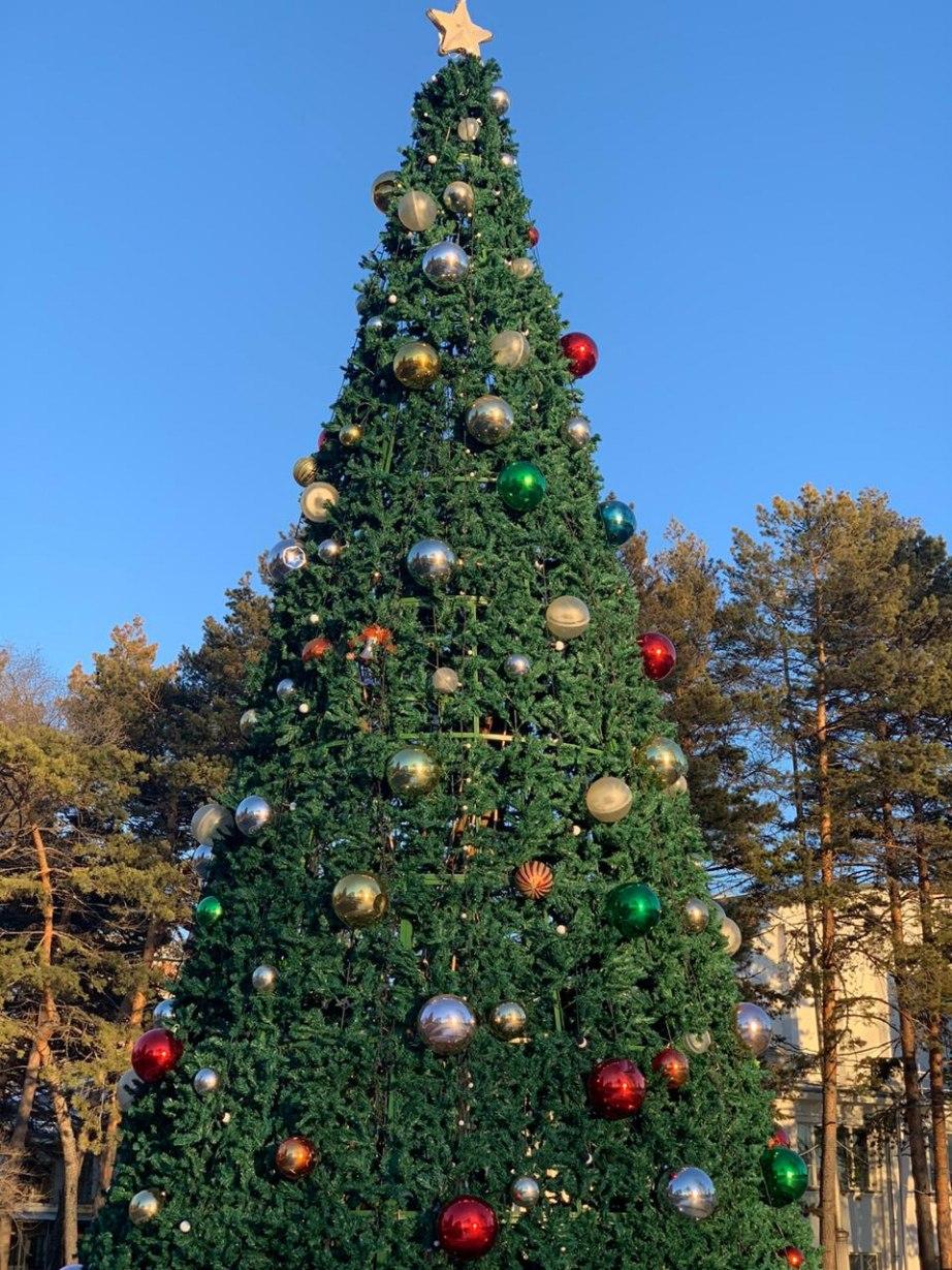 Хабаровчан приглашают украсить елки спортивного парка на набережной к Новому году