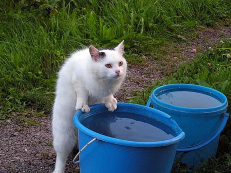 Отключение горячей воды в Хабаровске пройдет в июне (2021)