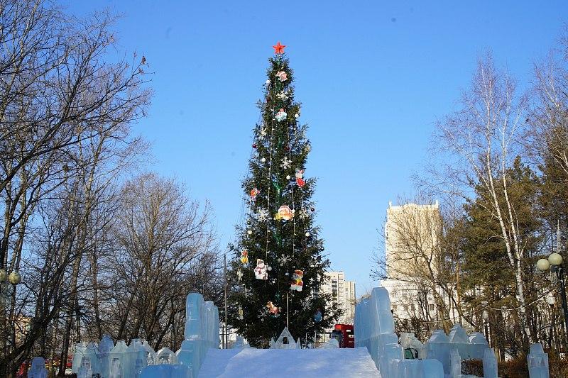 Главную новогоднюю елку Хабаровска нарядили в парке «Динамо»