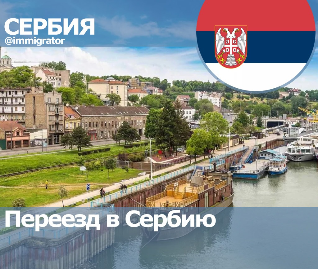 Переезд в сербию дубай февраль