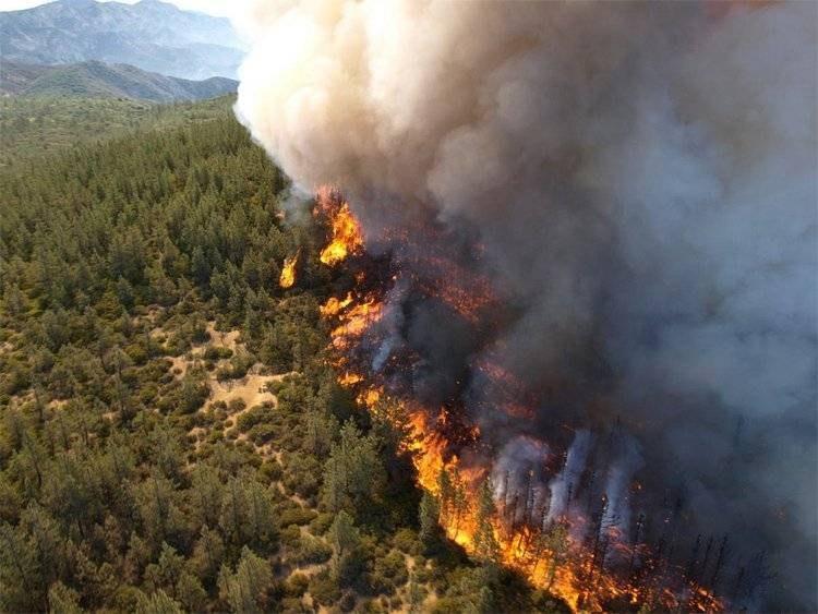 Экологическая катастрофа в Якутии: лесные пожары набирают оборотов